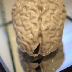 """Cycle: Finite"" - MRI-rendered slipcast porcelain shards, glue, mirror. 12 x 12 x 12"" - 2014."