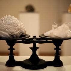 """""""3 Pounds"""" - MRI-rendered slipcast porcelain, quartz, cast iron scale. 16 x 8 x 12"""" - 2014."""